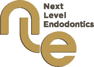 Next Level Endo